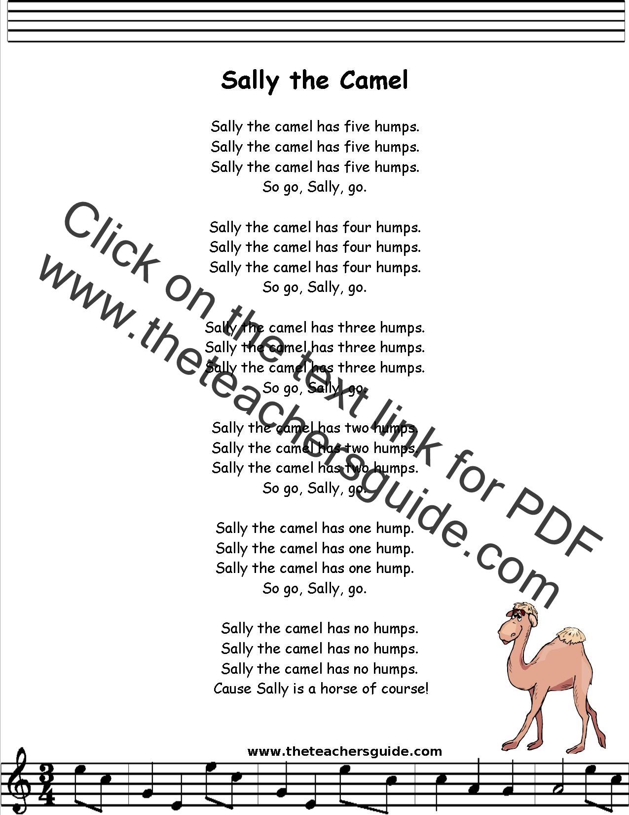 Sally the Camel Lyrics